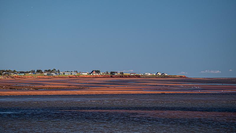 shoreline near Victoria.jpg