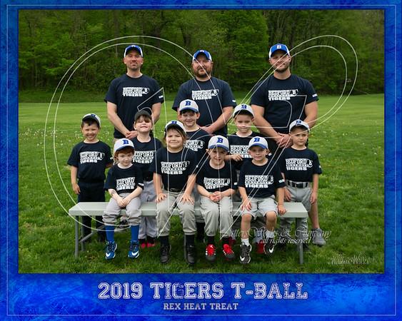 Wingard TBall Tigers