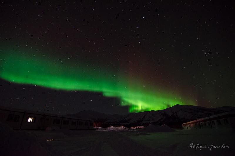USA-Alaska-Coldfoot-Aurora-3244.jpg