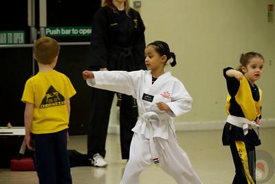Taekwondo Dec12