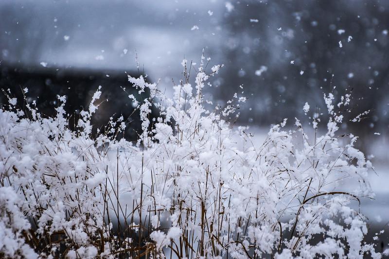 Chaska April Showers-86.JPG