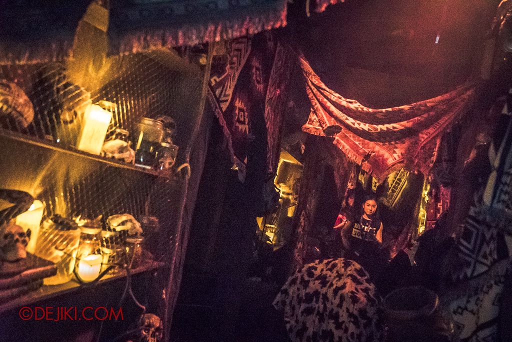 Halloween Horror Nights 7 - HEX haunted house / Hallway of collections