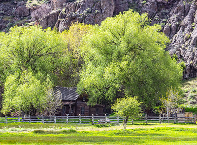 Old Homestead Along the Provo River, Utah