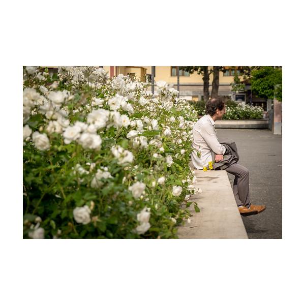 126_Flowers_10x10.jpg