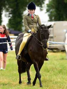 Longford - pony classes