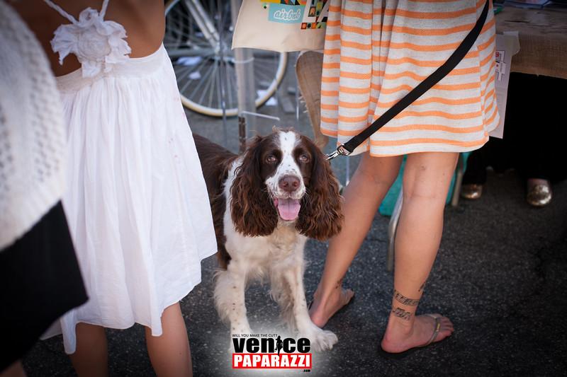 VenicePaparazzi-411.jpg