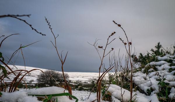 Dingle Peninsula with Snow