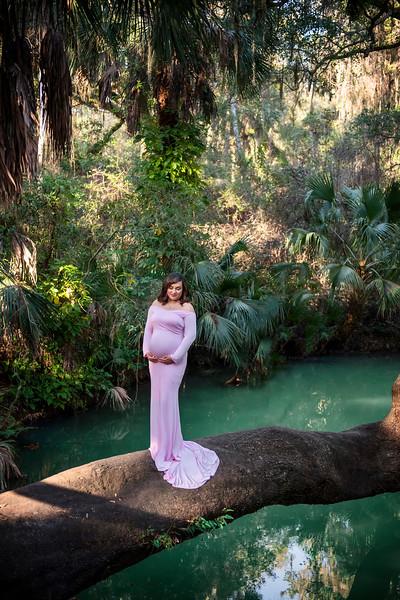 Barnes Maternity Feb 2021