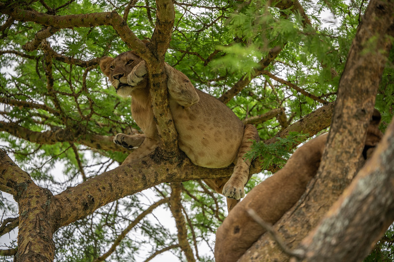 Uganda_T_QE-1081.jpg
