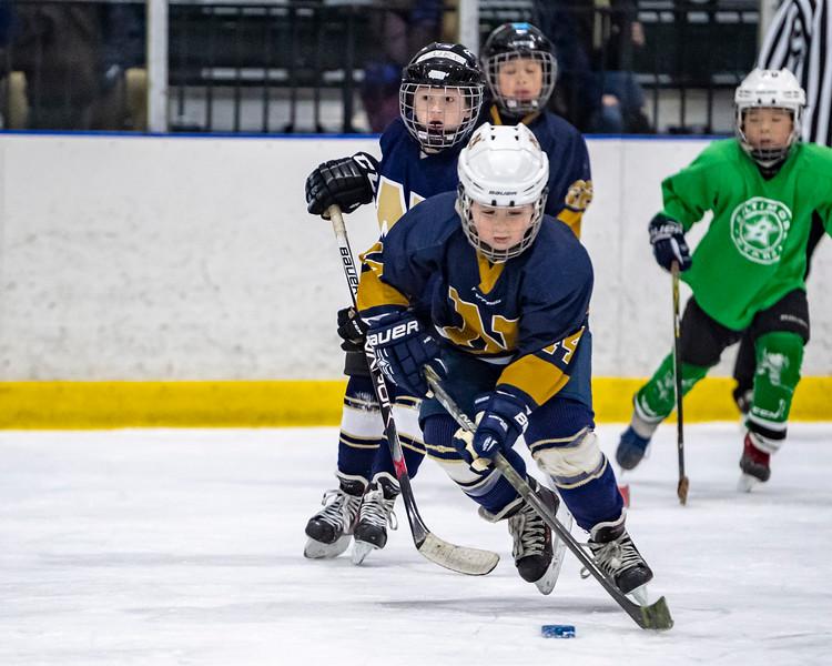2019-02-03-Ryan-Naughton-Hockey-77.jpg