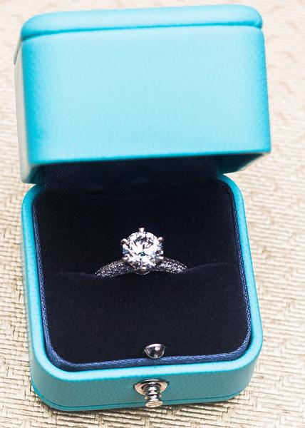 Engagement (30 of 226).jpg