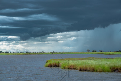 Chobe River_3603-Edit