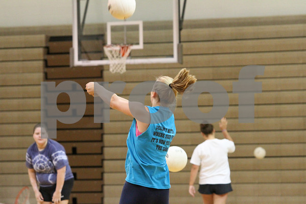 Volleyball 2010 Season