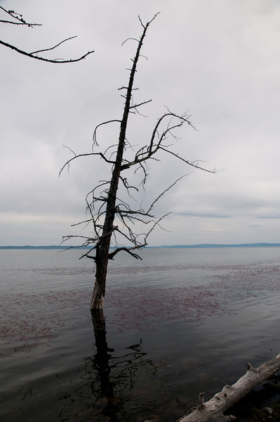 LakeCamp-10.jpg