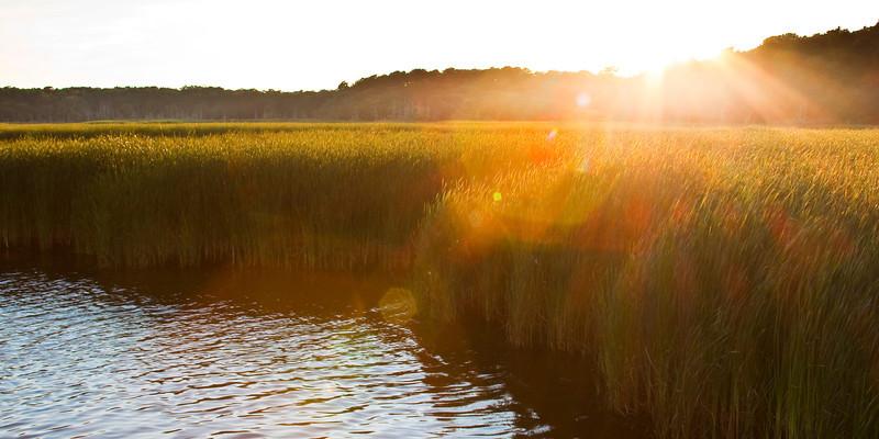 Cape Grass Sunset Pano.jpg