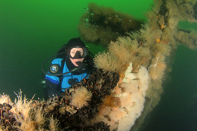 Best of New York Area Divers and Wrecks