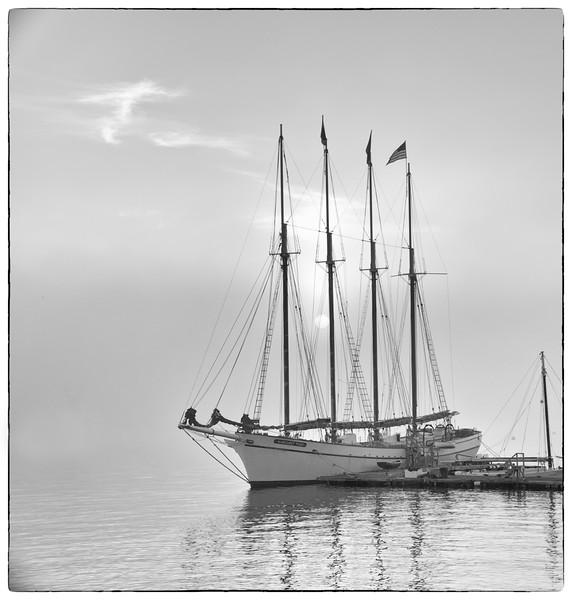 Margaret Todd at dawn.jpg