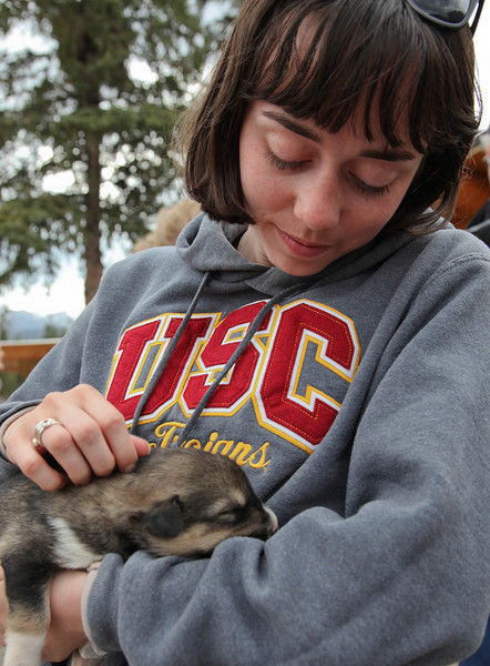 Stephanie and one of Jeff King's two week old sled dogs.