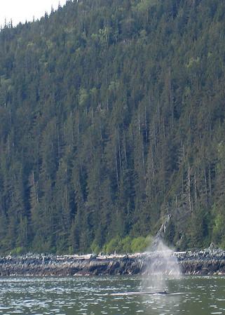 5/27/06 - Day trip to Juneau, AK