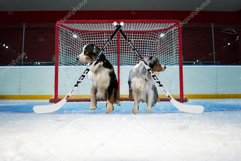 OlympicHockey.GaWy.jpg