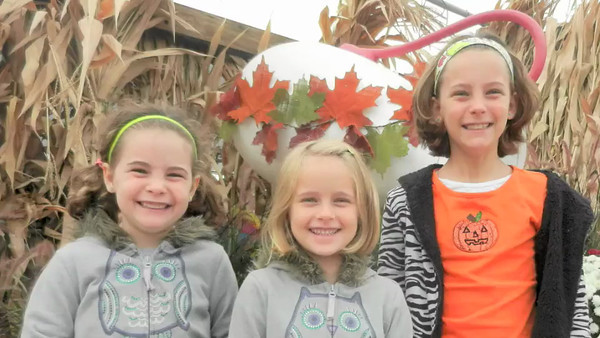 Simmons Farm, October 2013