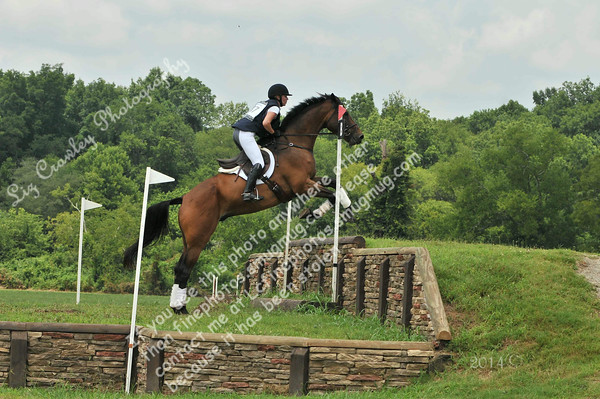 BRIE MURRAY AND FERNHILL CHAOS #87