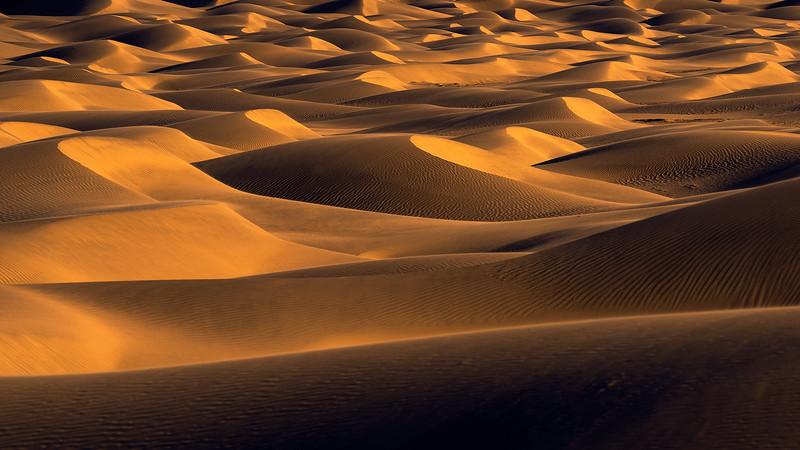 Dune5 FB.jpg