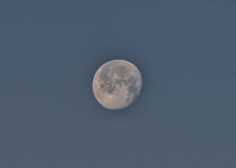 NEA_7066-7x5-Moon.jpg