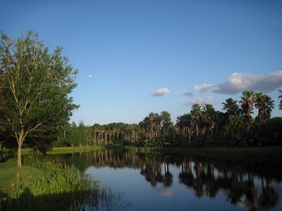 Photos from Florida