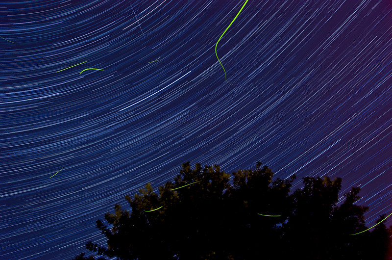 Day 171: Star Trail and Fireflies.