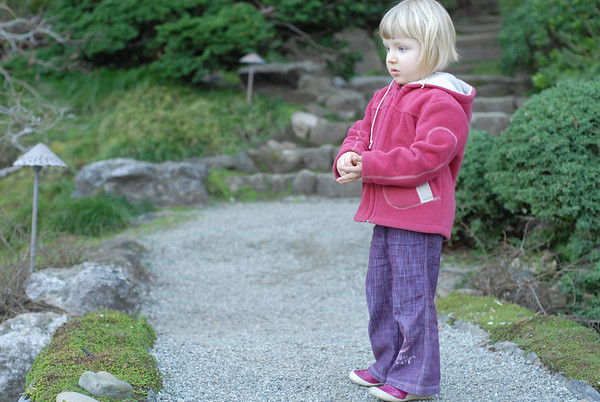 2011-02-06 Hakone gardens