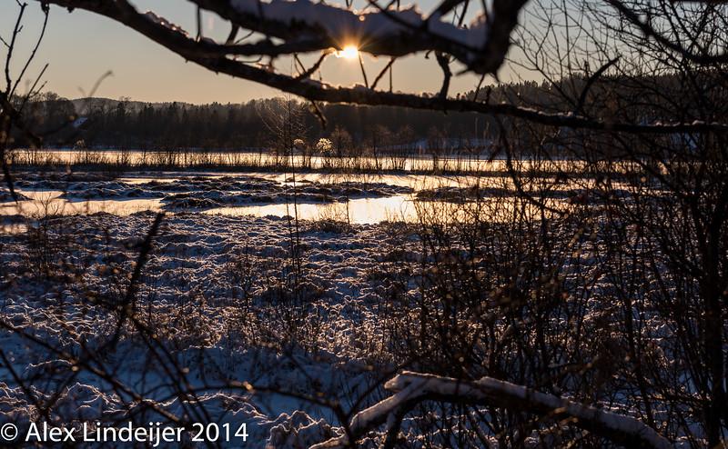 Lindeijer_20141225_142213.jpg