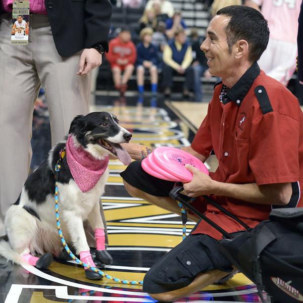 Frisbee dogs 19.jpg