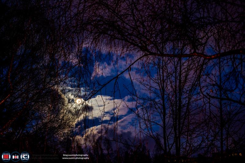 Suomiphotography_009.jpg