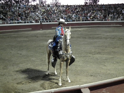 Gustine Bull Fight-2010