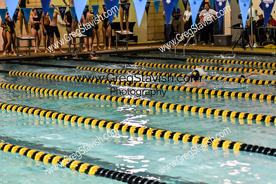 2017 Porter Ridge High School Swimming