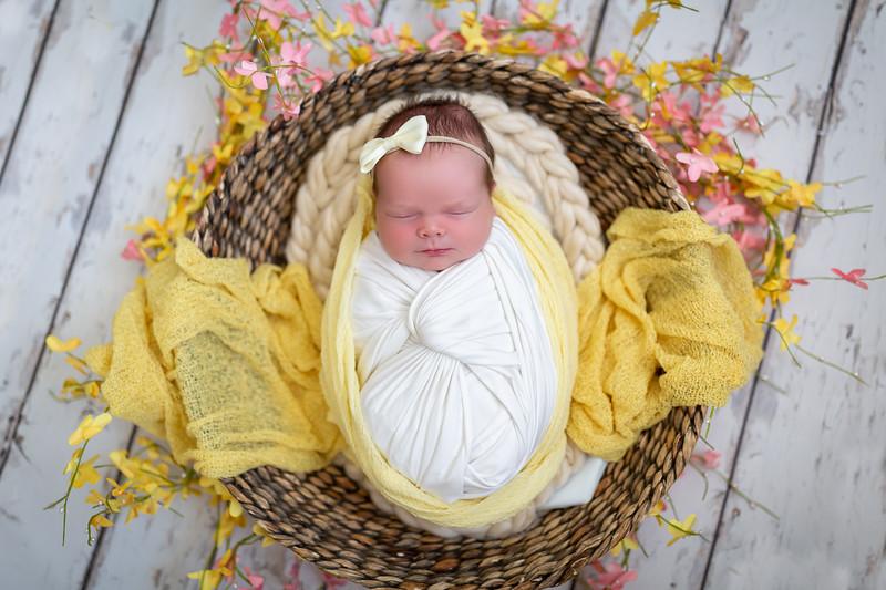 Baby Ellis