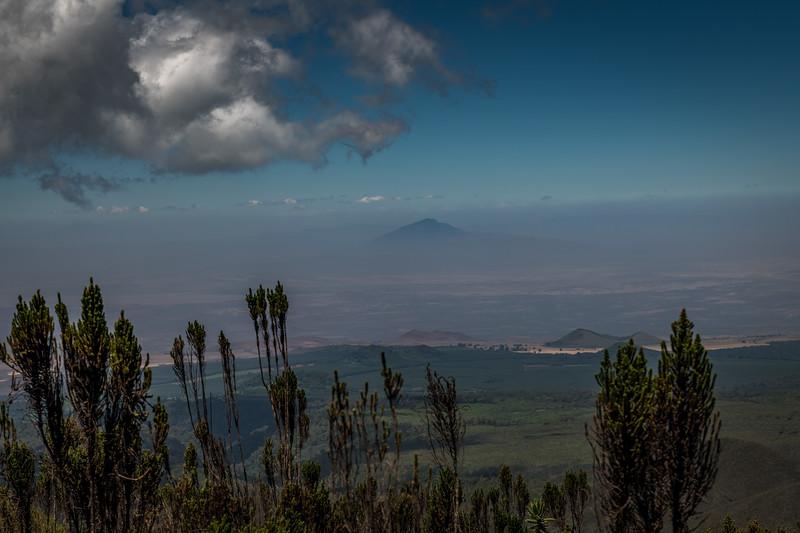 Kilimanjaro_Feb_2018-6.jpg