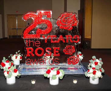 Detroit Metro Convention & Visitors Bureau ROSE AWARDS