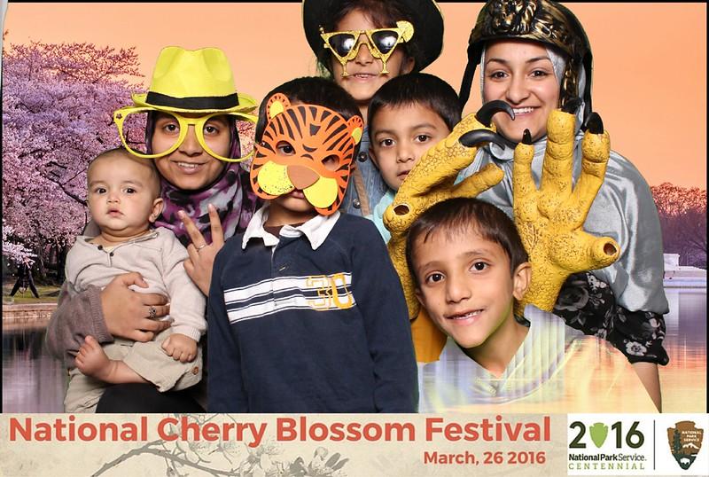 Boothie-NPS-CherryBlossom- (149).jpg