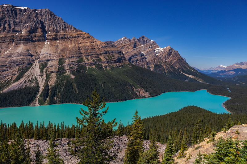 Peyto Lake, Banff National Park. Alberta, Canada.