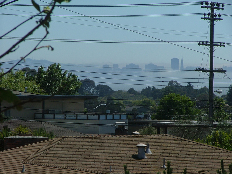 A view of SF on one of the walking portions of my daily commute