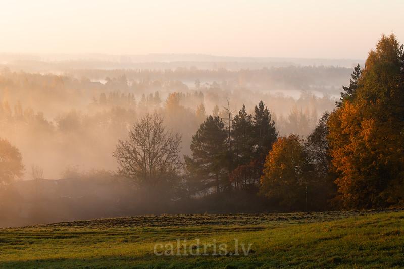 Saullēkts pie Adamovas ezera