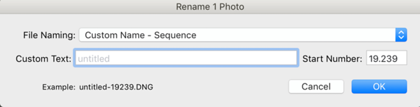 Renaming Window with template Custom Name - Sequence selected