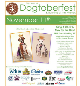 2017-11-11--Suncoast Animal League--Dogtoberfest and Running of the Wieners