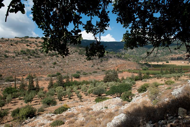 Israel-7298.jpg