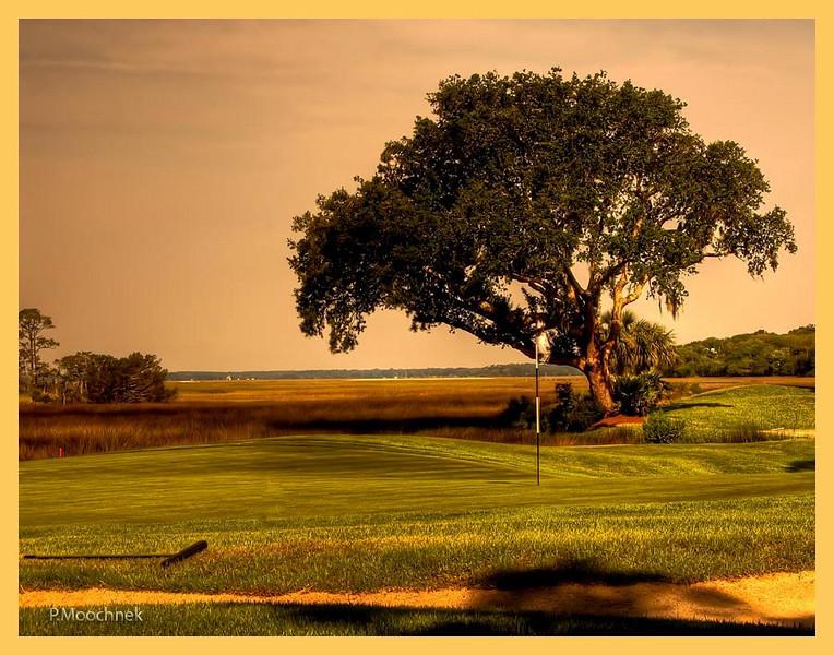 Marsh Oak Golf Course