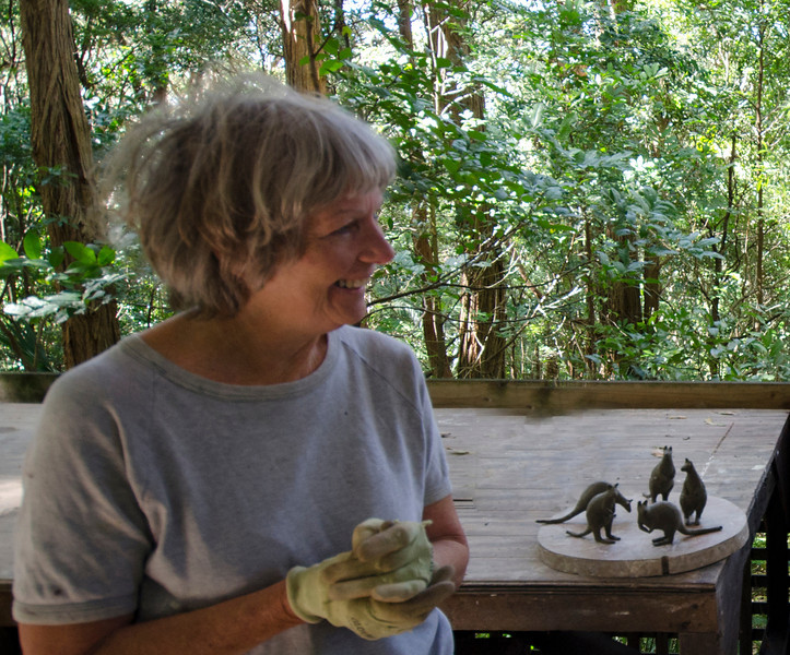 Gaby Porter's sculptures in her garden - part of the rainforest above Wombarra (10)