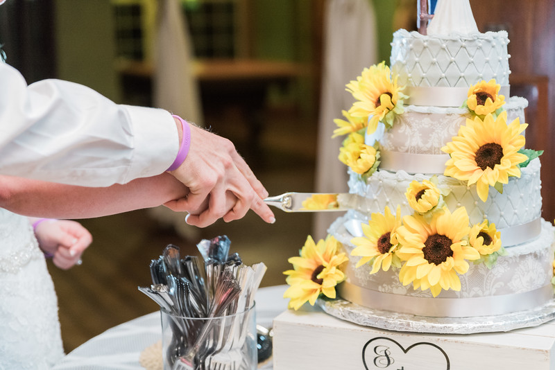 ELP0224 Sarah & Jesse Groveland wedding 3602.jpg