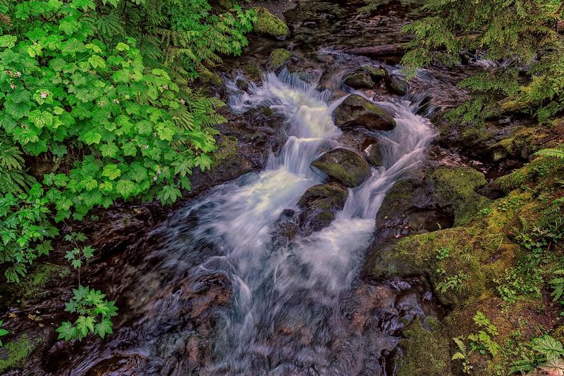 Serene Stream